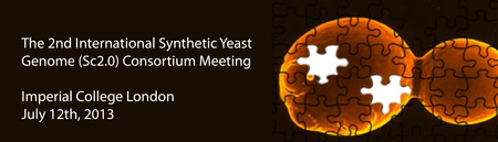 The 2nd International Synthetic Yeast Genome (Sc2.0) Consortium...