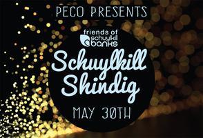 Schuylkill Shindig 2015
