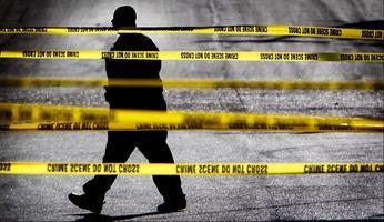 Violence & the City