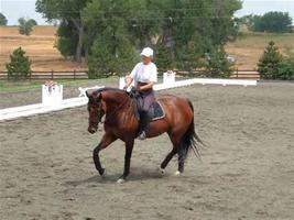 Sandra Hotz Ride-a-Test and Clinic (Shannondale)