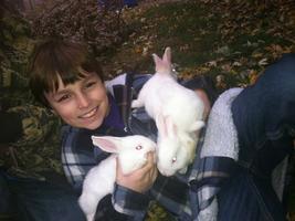 STEM Bunnies Day Camp