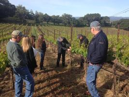 Guided Harvest Winemaking and Vineyard Tour & Wine...