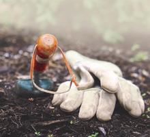 Community Vegetable Gardening