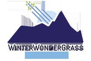 COLORADO WinterWonderGrass Music & Brew Fest