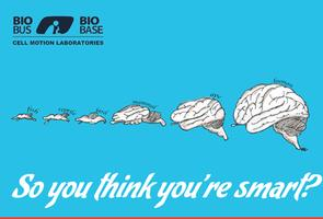 Free Drinks, Fast Science: So you think you're smart?