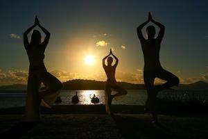 Island Yoga on Spectacle Island