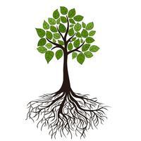 Faith-Rooted Organizing Training at the Highlander...