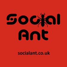 Social Ant logo