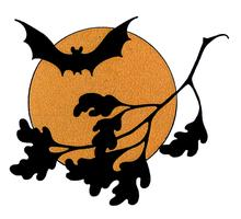 2015 Bat Walks in Three Brooks Local Nature Reserve,...