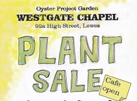Charity Plant Sale
