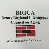 """BRICA'S """"BRONX MINI WHITE HOUSE CONFERENCE ON AGING"""""""