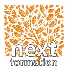 NextFormation logo