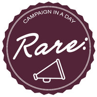 Campaign in a Day™: @DiginnCPD and @Rare_Consulting
