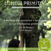 Introduzione all'Intelligenza primitiva - corsa base...