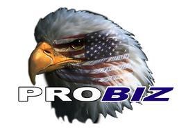 ProBiz 2015