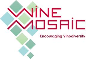 Wine Mosaic Connexion