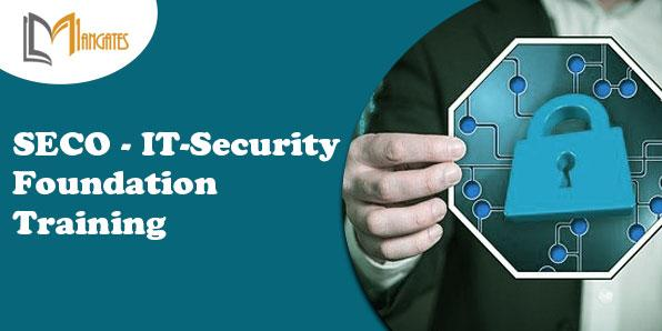 SECO - IT-Security Foundation 2 Days Training in Detroit, MI