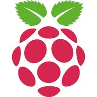 Manchester Raspberry Jam X