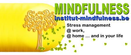 Séance d'information préalable au Cycle Mindfulness...