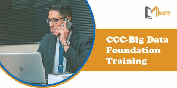 CCC-Big Data Foundation 2 Days Training in Stuttgart