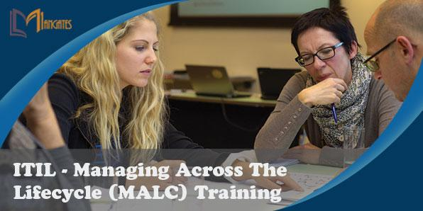 ITIL® – Managing Across The Lifecycle 2 Days Training in Dallas, TX