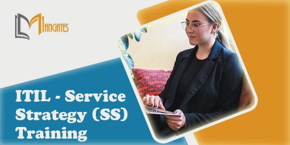 ITIL - Service Strategy (SS) 2 Days Training in Hamburg