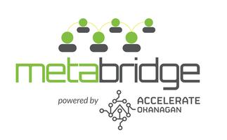 metabridge 2015