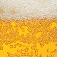 Beer Tasting: Eastern European Styles