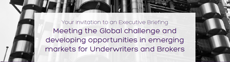 Executive Briefing: Meeting the global challenge