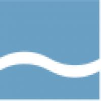 Blue River Interactive Group logo