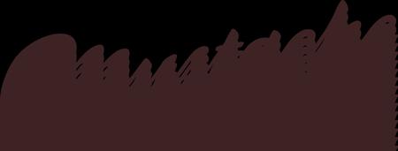 2015 Mustache Dache Virtual Run