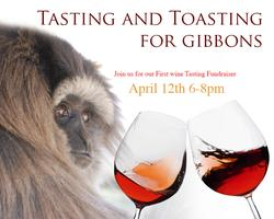 Tasting and Toasting for Gibbons