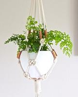Macrame Planter Workshop (Adults)
