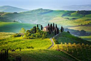 Wines from Tuscany, Wine and Cheese Tasting