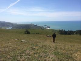 Geology of the Jenner Headlands Preserve Hike