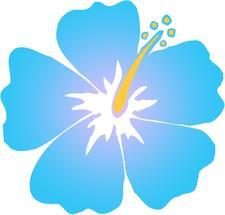 Nadia Nave logo
