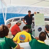 PADI Divemaster Course - 2013