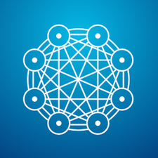 Network Society Project logo