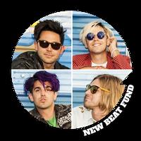New Beat Fund - All members: DIY Artist Development