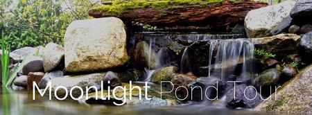 Moonlight Pond Tour 8/1/15