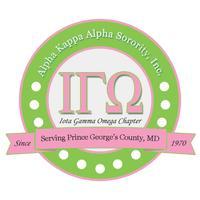 2015 IGO Chapter Retreat -  Where Service and...