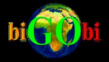 BIGOBI logo