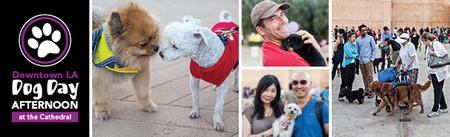9th Annual Dog Day Afternoon at the Cathedral