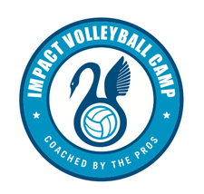 Impact Volleyball Camp logo