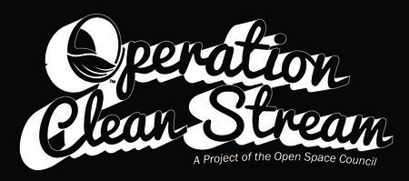 Operation Clean Stream 2015- Passport to Clean Water