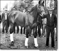 Seabiscuit – The Story, the Hero and the Legend