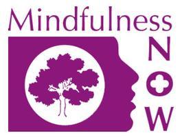 Mindfulness Meditation Teacher Training - April 2016