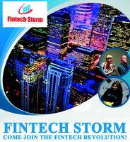 Fintech Storm Open Bank