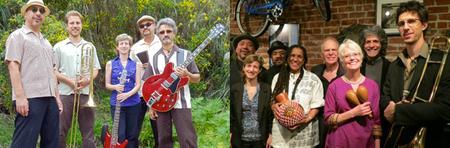 Survival Groove & Nuevo Mundo - Salsa, Son & Latin Jazz