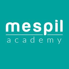 MESPIL Academy logo